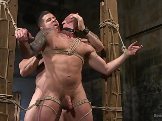 Extreme gay porn in bondage scenes be required of two bareback hunks